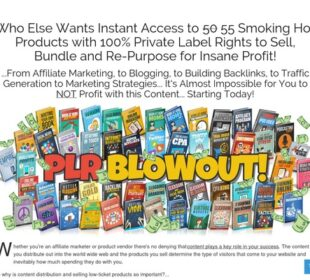 PLR Blowout - 55 Niche eBook Products with Full Private Label Rights