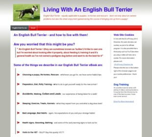 English Bull Terrier | How to live with an English Bull Terrier, Puppies To Adult !